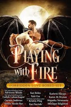 Playing with fire front cover