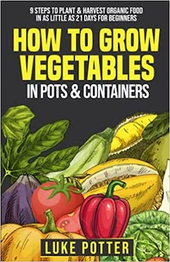 How To Grow Vegetables In Pots & Containers
